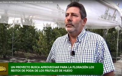 El grupo operativo Restos de Poda, en Diario de Campo de 7TV