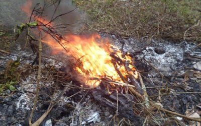 Ecologistas en Acción demanda «medidas eficaces» contra la contaminación en Murcia