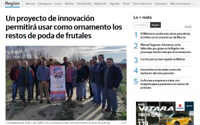 Los medios de comunicación se hacen eco de los avances del proyecto Flor de Frutas