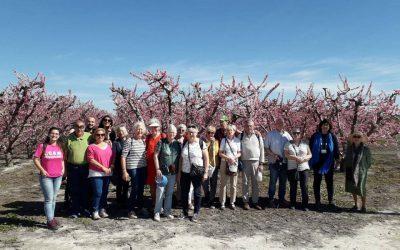 Más de un centenar de turistas noruegos y finlandeses, primeros turistas en disfrutar de 'Flor de Fruta'