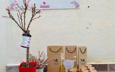 Flores ornamentales de frutales en macetas como souvenir para los visitantes de la Floración de Cieza